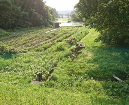 10年以上放棄された田の代掻き
