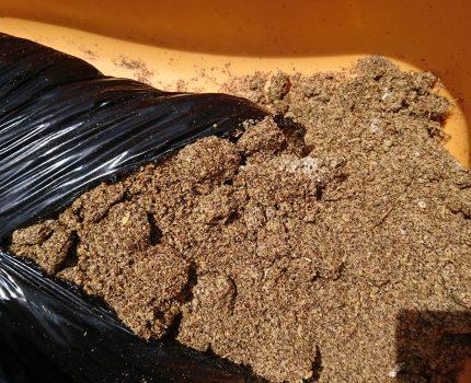 田植え翌日に米ぬかぼかし肥料投入